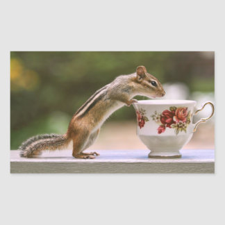 Picture of Chipmunk with China Teacup