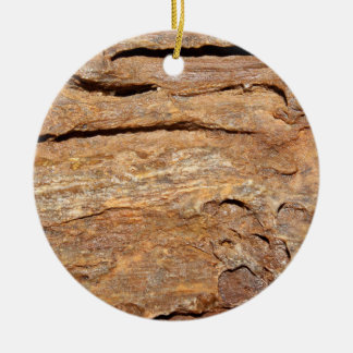 Picture of Fossilized Wood. Round Ceramic Ornament