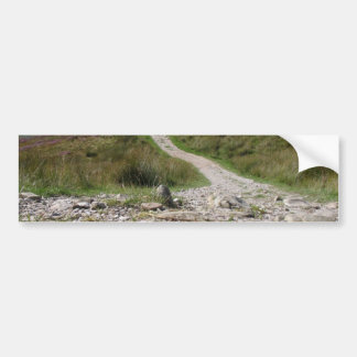 Picture Of Path In Lake District Taken From The Gr Bumper Stickers