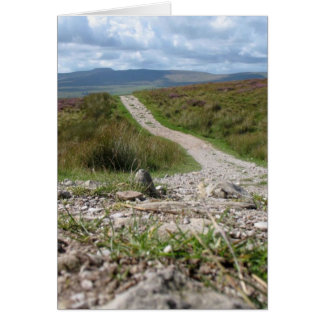 Picture Of Path In Lake District Taken From The Gr Greeting Cards