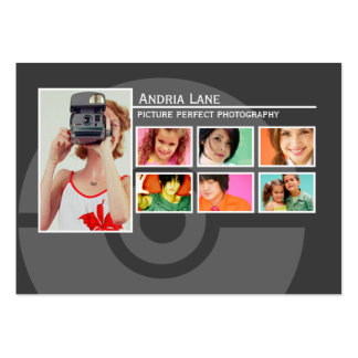 Picture Perfect Portfolio Chubby Business Cards