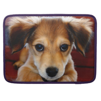 Picture Perfect Puppy! Sleeve For MacBook Pro