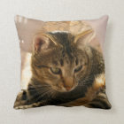 Pictures of cats gifts pillows throw pillows cats