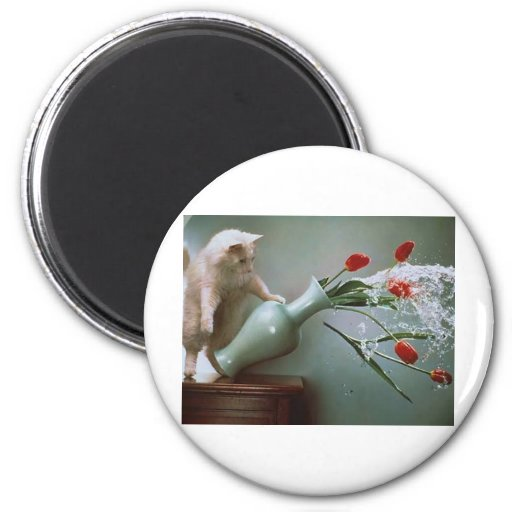 Pictures taken at the right moment refrigerator magnets