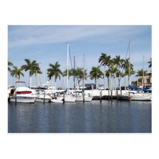 Picturesque Manatee River Marina Florida Post Card