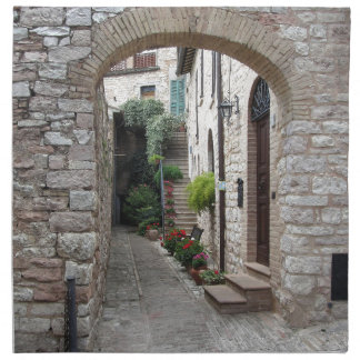 Picturesque old village with flowers printed napkins