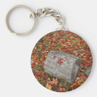 Piece of Wood in Fall Leaves Basic Round Button Keychain