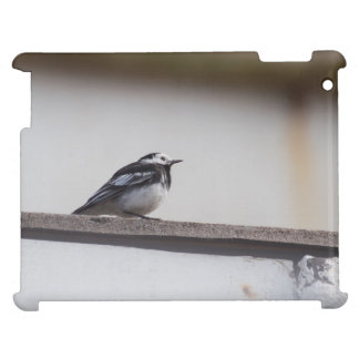 Pied Wagtail Cover For The iPad 2 3 4