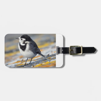 Pied Wagtail Luggage Tag