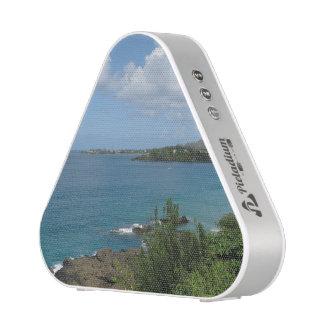 Pieladium Bluetooth Speaker - Photography-1