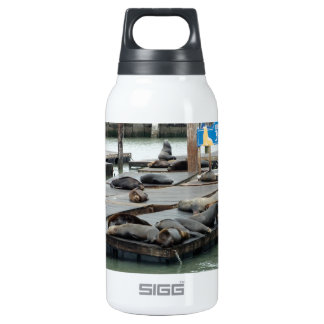 Pier 39 insulated water bottle