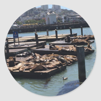 Pier 39 San Francisco California Classic Round Sticker