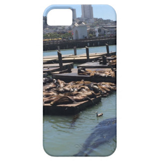 Pier 39 San Francisco California iPhone 5 Case