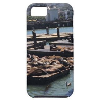 Pier 39 San Francisco California iPhone 5 Covers