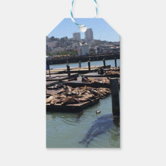 Pier 39 San Francisco California Pack Of Gift Tags
