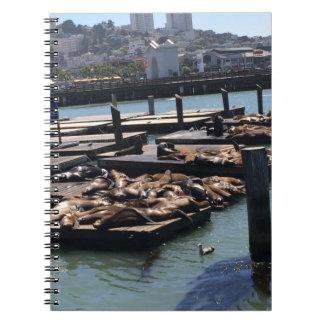Pier 39 San Francisco California Spiral Notebook