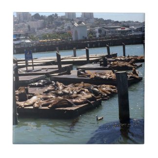 Pier 39 San Francisco California Tile