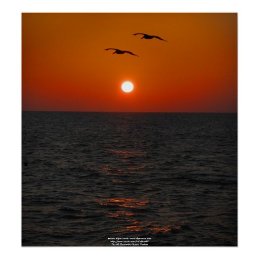 Pier 60 Clearwater, FL  Sunset Poster