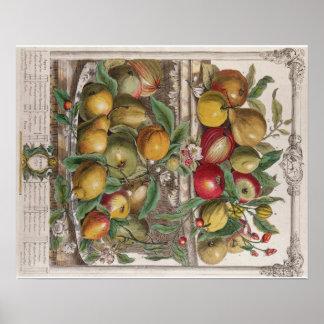 Pieter Casteels, Twelve Months of Fruits, April Poster