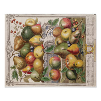 "Pieter Casteels, Twelve Months of Fruits""  January Poster"