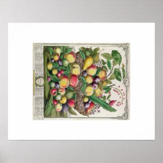 Pieter Casteels, Twelve Months of Fruits, July Poster