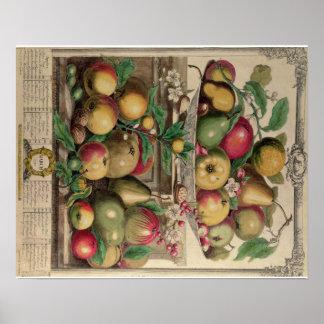 Pieter Casteels, Twelve Months of Fruits, March Poster