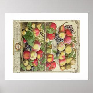 Pieter Casteels, Twelve Months of Fruits September Poster