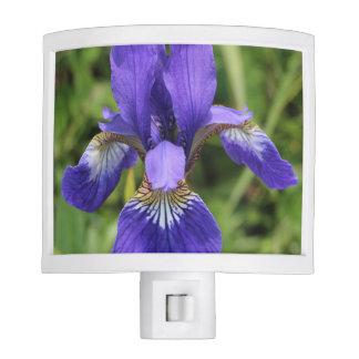 PIF Purple Iris Night Light