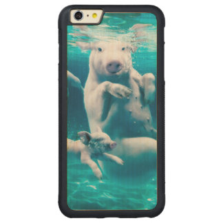 Pig beach - swimming pigs - funny pig carved maple iPhone 6 plus bumper case
