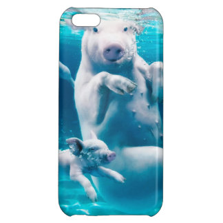 Pig beach - swimming pigs - funny pig case for iPhone 5C