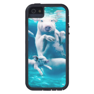 Pig beach - swimming pigs - funny pig iPhone 5 cover