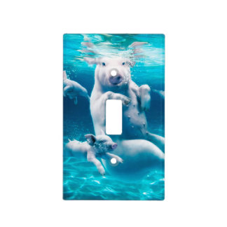 Pig beach - swimming pigs - funny pig light switch cover