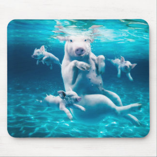 Pig beach - swimming pigs - funny pig mouse pad