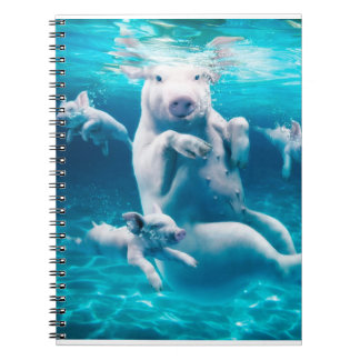 Pig beach - swimming pigs - funny pig notebooks
