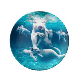 Pig beach - swimming pigs - funny pig porcelain plates