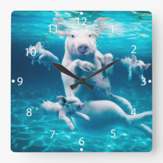 Pig beach - swimming pigs - funny pig square wall clock