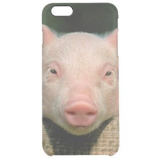 Pig farm - pig face clear iPhone 6 plus case