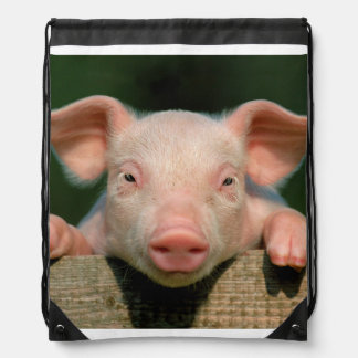 Pig farm - pig face drawstring bag