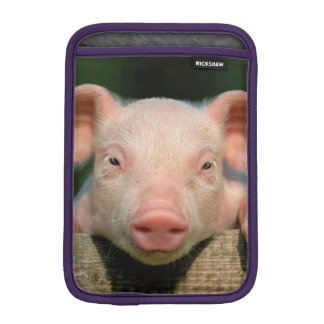 Pig farm - pig face iPad mini sleeve