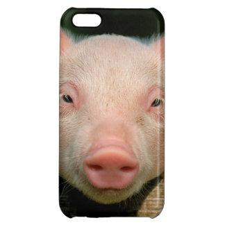 Pig farm - pig face iPhone 5C case