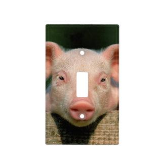 Pig farm - pig face light switch cover