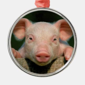 Pig farm - pig face metal ornament