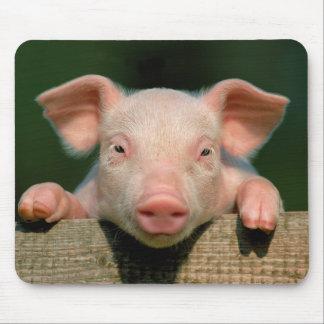 Pig farm - pig face mouse pad