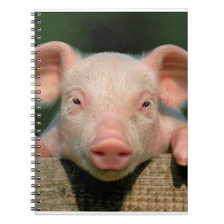 Pig farm - pig face notebooks