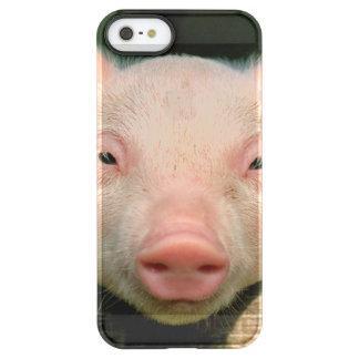 Pig farm - pig face permafrost® iPhone SE/5/5s case