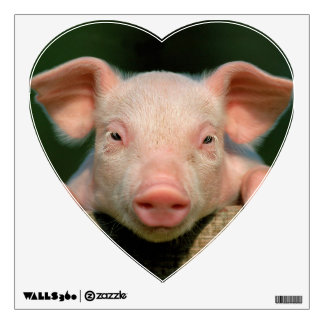 Pig farm - pig face wall decal