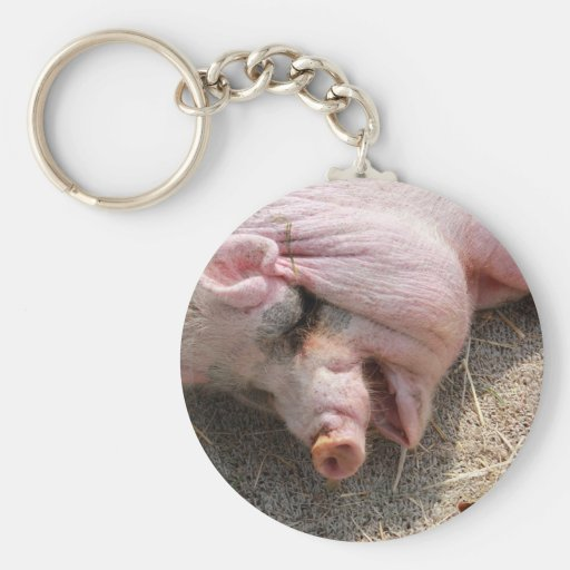 Pig Good Luck Keychains