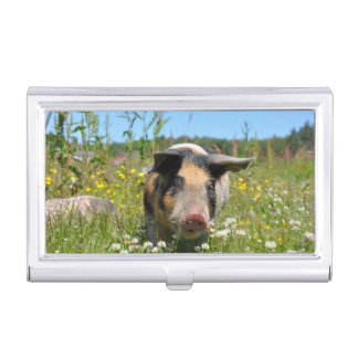 Pig in the Nature Case For Business Cards