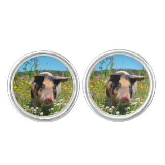 Pig in the Nature Cufflinks