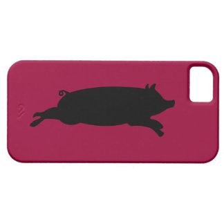 Pig iPhone 5 Case